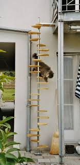 cat stairs 10 best cat ladder images on cat stuff animals and