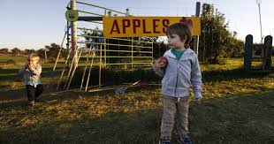 Omaha Area Pumpkin Patch by 8 Pumpkin Patches And Apple Orchards In Central Iowa
