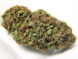 Atomic Northern Lights Strain Review I Love Growing Marijuana