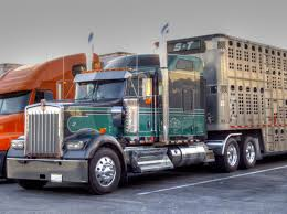 S And T Trucking Livestock Relocation Kenworth | Cattle Trucks ... S And T Trucking Livestock Relocation Kenworth Cattle Trucks Midwest Group More About Our Professional Trucking Company In Huron Sd Legislation Introduce To Study Regulations Reform Jvlx Inc Home Firms Worried Electronic Logging Device Could Hurt Lunderby Llc About Us Vanee These Are The People Who Haul Our Food Across America Salt Npr Connolly American Truck Simulator Peterbilt 389 Hauling Youtube
