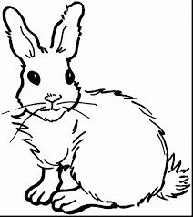 Coloring PagesElegant Rabbit Pages Magnificent Printable With And For Toddlers