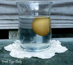 Bad Eggs Float Or Sink In Water by The Float Test How Old Is That Egg Easy Test For Freshness