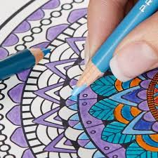 Dazzling Deeply Saturated Shades Bring The Adult Coloring Pages To Life Intense In One Stroke Subtle Next Pencils Have Cores That Are Strong