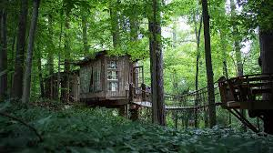 100 Treehouse In Atlanta A Treehouse In Is The Worlds Most Desirable Airbnb Listing