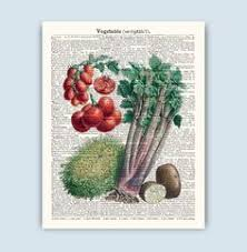 Set Of 3 Prints Vegetable Art Vintage Kitchen Poster Wall Decor SKUV4