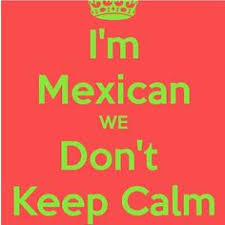 Tortilla Curtain Quotes Racism by Proud To Be Mexican For Real Pinterest Mexicans Memes