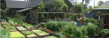 6000 Square by This Family Produces 6 000 Pound Of Food On 4 000 Square Of