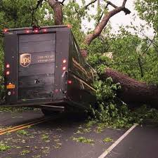 UPS Truck Crushed By Fallen Tree In Hudson Valley