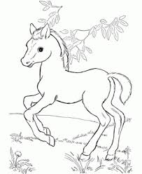 Baby Horse Coloring Pages Ba Depetta 2017 Line Drawings