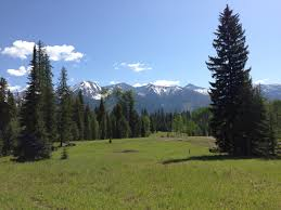 Ergle Christmas Tree Farm by Kevin Wetherell Ranch Properties For Sale Luxury Ranch Realestate