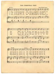 Pinery Christmas Trees by O Christmas Tree Song Lyrics Christmas Lights Decoration