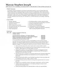 Exhilarating Resume Profile Summary Brefash
