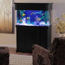 Clear For Life Rectangle Aquarium | Hayneedle I Really Want A Jellyfish Aquarium Home Pinterest Awesome Fish Tank Idea Cool Ideas 6741 The Top 10 Hotel Aquariums Photos Huffpost Diy Barconsole Table Mac Marlborough Tank Stand Alex Gives Up Amusing Experiments 18 Best Fish Images On Aquarium Ideas Diy Clear For Life Hexagon Hayneedle Bar Custom Tanks Ponds Designs For Freshwater Modern 364 And Tropical Ov Cylinder 2