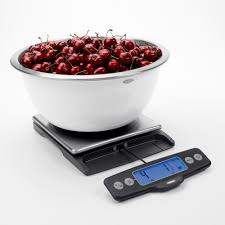 Taylor Bathroom Scales Customer Service by Taylor Analog Kitchen Scale In Stainless Steel 371021 The Home Depot