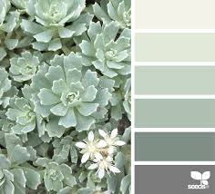 Gender Neutral Bathroom Colors by Succulent Tones Seeds Bedrooms And Room
