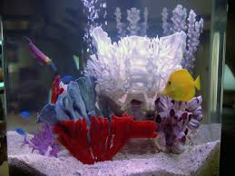 Star Wars Fish Tank Decorations by Fish Memory Alpha Fandom Powered By Wikia