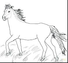 Realistic Horse Coloring Pages Plus In Pasture Page Free Printable