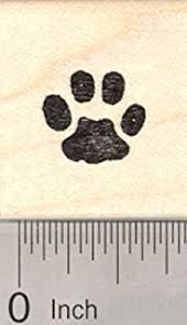 cat paw prints cat paw print rubber st arts crafts sewing