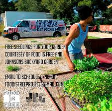 Free Seedlings From Johnsons Backyard Garden | Food Is Free Project The Daily Dirt Johons Backyard Garden Free Seedlings From Food Is Project Photography By Jody Horton Pictures Home Designs Photos Brenton Johnson Organic Farmer Entpreneur Dhead Tammarinated Spring Power Bowls A Time To Kale Garlic And Jalepenos Austin Urban Gardens Holly Cowart Day At Americas Hippest Farm