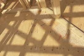 Fix Squeaky Floors Under Carpet by How To Fix A Squeaky Upstairs Floor Home Guides Sf Gate