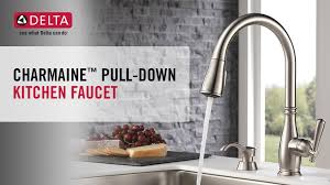 Moen Lindley Faucet Loose Handle by Delta Charmaine Single Handle Pull Down Sprayer Kitchen Faucet