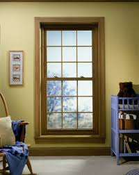Simonton Patio Door Sizes by Vantagepointe 6500 Double Hung Window Vantagepointe Windows