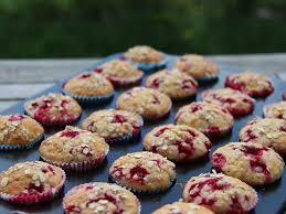 haferflocken johannisbeer muffins