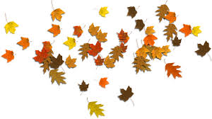 fall leaves clip art 72