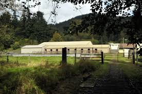 Cougar Mountain Stables - Welcome! Designing Your Stable For Fire And Emergency Safety Exploring Connecticut Barns Uconnladybugs Blog Barn Pros Projects Gallery Horses Pinterest Horse 111 Best Riding Arenas Animal Care Sheds Water Wheels Dog Breyer Classics 3horse Play Set Walmartcom Successful Boarding At Expert Advice On Horse Pasture In Central Alabama Shelclair 10 Tips Farms Stables To Get Ready Spring The Stanford Equestrian Horses Some Of The Horses At Barn Horseback Lancaster