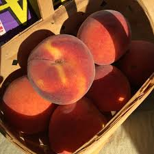 Kernel Toms Pumpkin Patch Moorpark Ca by Peaches Information Recipes And Facts