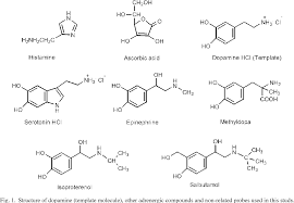 Structure Of Dopamine Template Molecule Other A