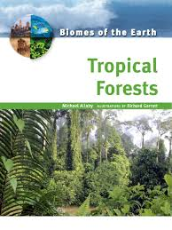 Earth Floor Biomes Desert by Biomes Of The Earth Tropical Forests Earth U0026 Life Sciences
