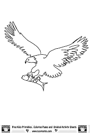 Eagle Coloring Pages Bird Animals 5