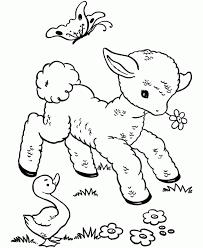 Baby Animals Coloring Sheets