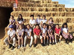 Stanly Lane Pumpkin Patch Napa 2015 by Faces And Places Nov 29 Faces And Places Napavalleyregister Com
