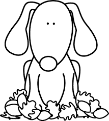 Black and White Dog Sitting in Leaves