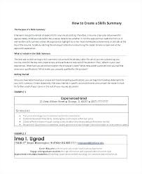 Qualifications Examples For Resume Example Of Best Summary Printable Skills