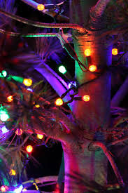 Prelit Christmas Tree That Puts Up Itself by 39 Best Christmas Lights Images On Pinterest Christmas Lights
