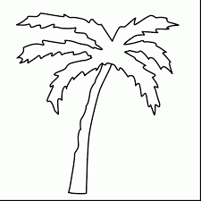 Incredible Palm Tree Leaves Coloring Pages With And