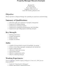 Information Technology Resume Skills Examples Good Summary Exceptional For A Template Communication On