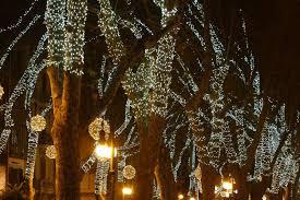 Flagpole Christmas Tree by Christmas Pole Christmas Tree Lights On Flag For Light Kits
