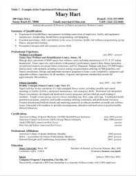 Sample Resume Other Experience