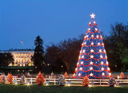 Kinds Of Christmas Trees In India by December 2017 Festivals And Events In Washington Dc