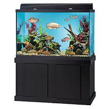 Extra Large Fish Tank Decorations by Top Fin 150 Gallon Aquarium Ensemble Fish Aquariums Petsmart