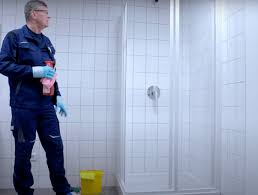 schimmel in der dusche entfernen alles über schimmel
