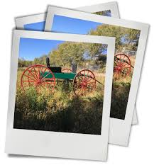 Wild West Wagons, Rigs, Buggies & Stage Coach — Elliott Location ... Keyser Manufacturing Wild West Shootouts 2019 Shaw Trucking Super Vintage New Cactus Cowboy Antenna Topper Cactus For Franks Austin Food Trucks Roaming Hunger Latino Times Video Promo Cars Youtube 1949 Chevy Just Imagine Driving In The Mountains It Fr Michael Gelfant On Twitter It Gets Better Usps Now Hit Listing All 2014 Scion Tc Chevrolet Yerington New Used Vehicles Puerto Vallarta Amigos Sporttruck Rv Board As Late Model Fast Time Sponsor Of The Color Quarto Knows Blog