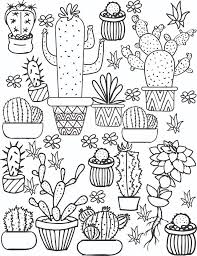 DOWNLOAD THE CACTUS SUCCULENT PAGES HERE The Adult Coloring Book