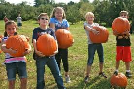 Pumpkin Picking Places In South Jersey by Pick Your Own Fruit Farm Apple Orchard Nj