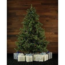 Barcana Christmas Trees by Christmas Trees You U0027ll Love Wayfair