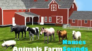 Kids Learning Animals Farm Names And Sounds Farm Animals | Kids ... Sleich Farm World Red Barn Playset Fun Animals Toys For Home Learning Tree Kids Names And Sounds Peekaboo Barn Ipad Iphone Android App Review Video For Kids Storytelling Festival Dance Fox Haven Organic And Nc School State Extension Figure Set School Specialty Marketplace Big Seguin Tx Youtube Education Fun Can Be Found At Minnesota Best Toddler Video Educational Animal Popup 25 Barns Ideas On Pinterest Barns Country Farms